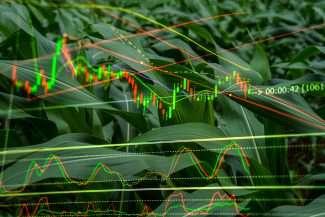 Data Democracy in Agribusiness
